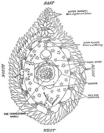 vulva 2